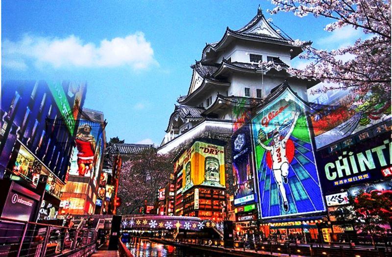 Pengalaman yang Luar Biasa Kursus Bahasa Jepang