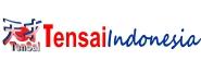 logo web tensai