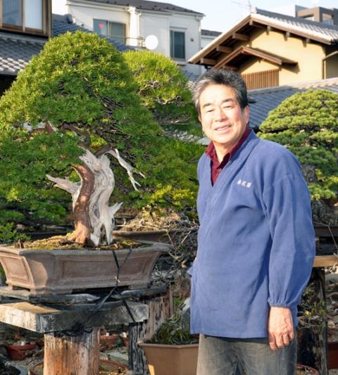 Museum Shunkaen Milik Sang Master Bonsai 02