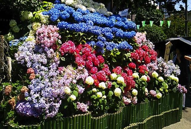 Warna Penting di Jepang