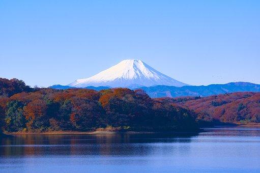 Pertama Kali di Tokyo? Inilah 5 Hal yang Harus Anda Lakukan